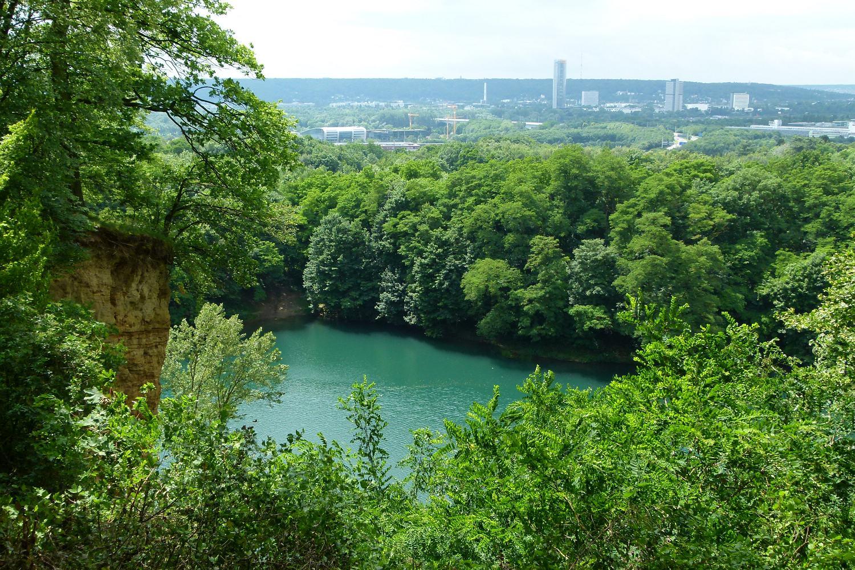 Dornheckensee | Naturerlebnis Ennert