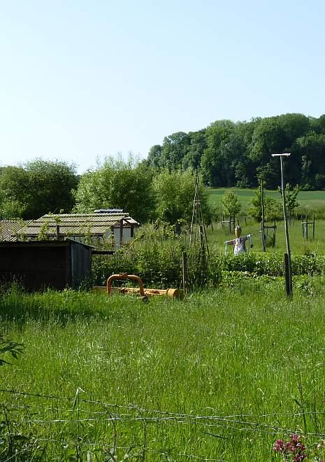 Garten am Rand von Oberholtorf